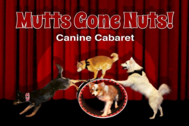 Mutts Gone Nuts Presented by Aventura Arts and Cultural Center
