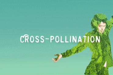 Saturday in the Park: Cross Pollination Presented by AIRIE